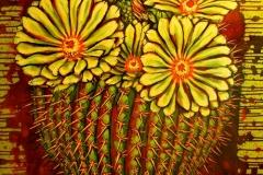 379 cactus